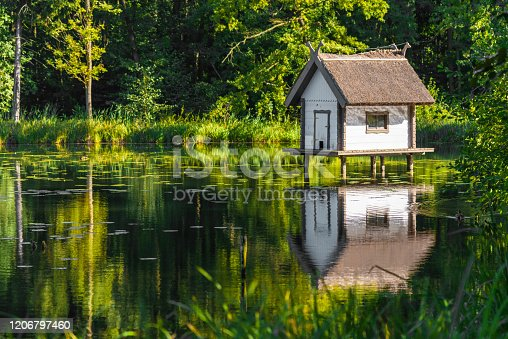 small hut on the water - duck house in a park landscape