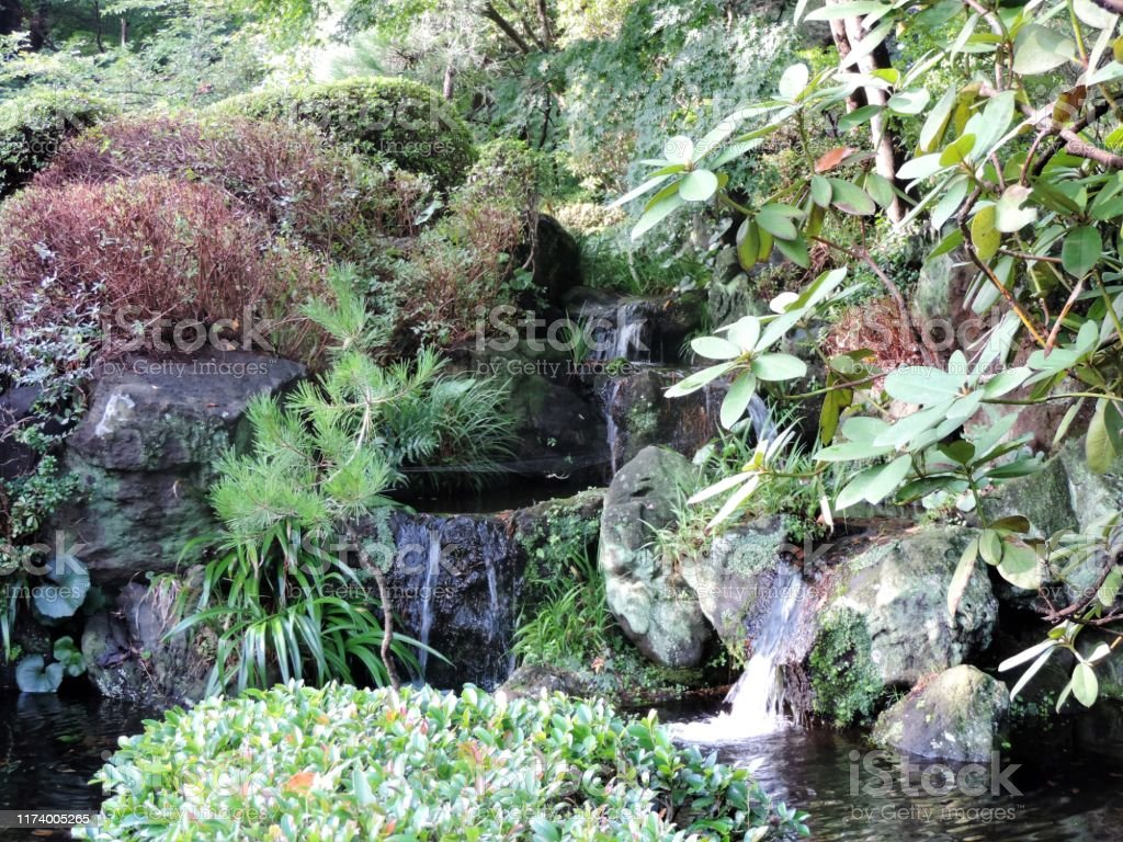 Small Japanese Garden Tokyo Area Stock Photo Download Image Now Istock