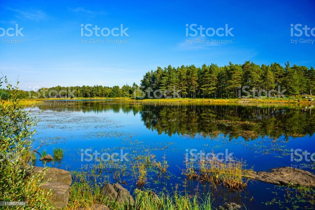 Small lake in Nortern England with forest reflection stock photo