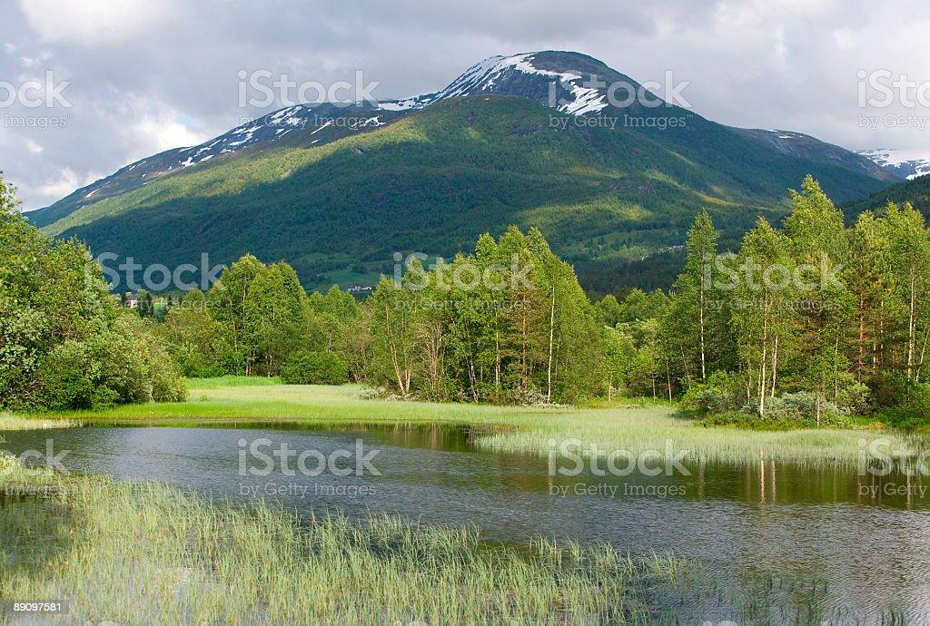 Small lake in Norwegian Mountain area (XL) royalty-free stock photo