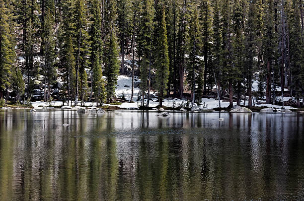 Small Lake in Yosemite stock photo