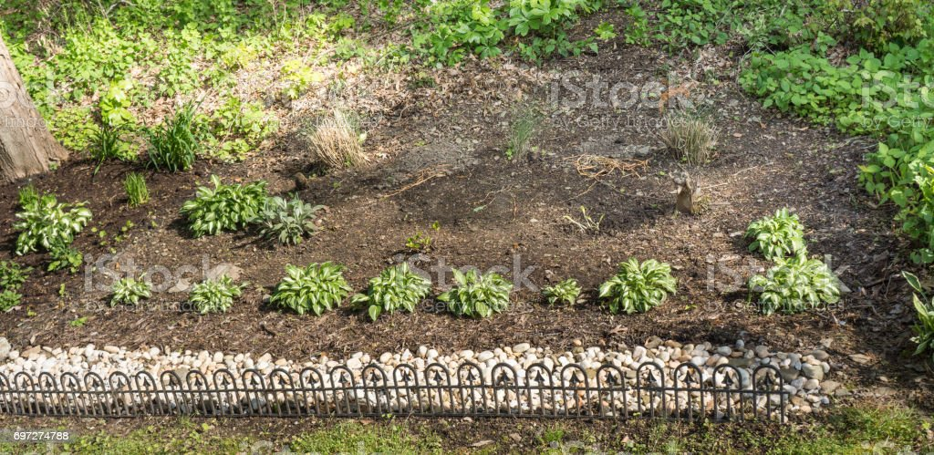 A Small Landscaped Garden With A Rocky Border Stock Photo