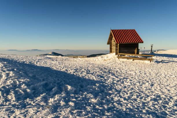 kleines blockhaus auf kopaonik, berg im winter - mülltonnenhäuschen stock-fotos und bilder