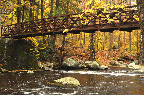 Small metal footlog crosses a river during fall. stock photo