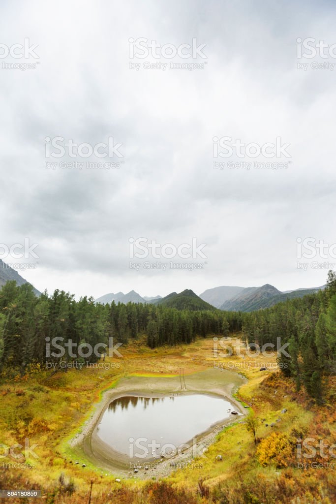 Small mountain forest lake. Altai autumn landscape. royalty-free stock photo