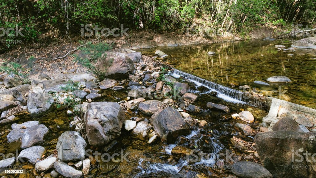 Small mountain stream in a shady jungle stock photo