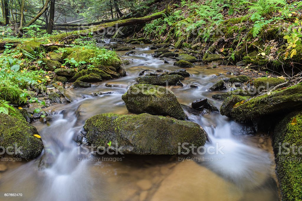 Kleines Mountain Stream – Foto