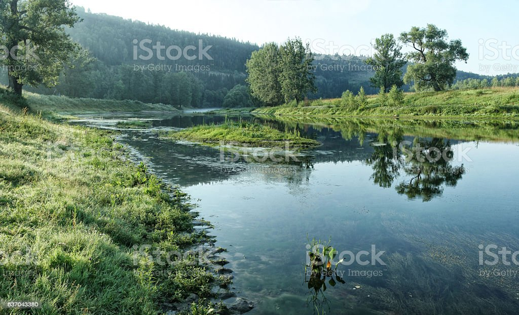 Small narrow and shallow river on background of forest slope stock photo