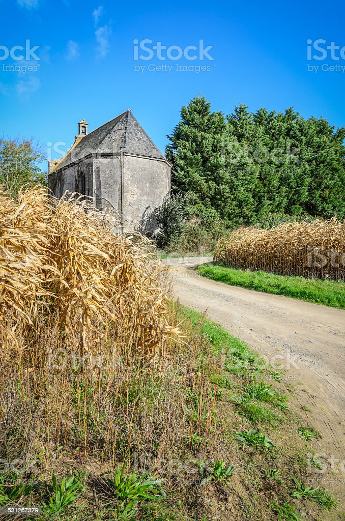 Small old medieval building in corn field stock photo