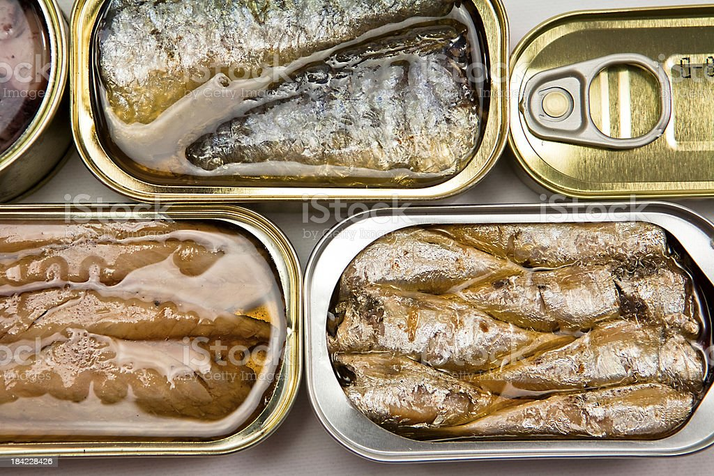 Small open tin cans of fish in oil Tins of different sizes and opening Aluminum Stock Photo