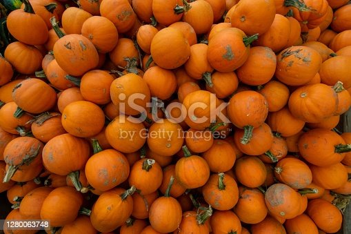 A Pile of Small Orange Pumpkings in a Wooden Box at a Farmer's Market Filling the Frame