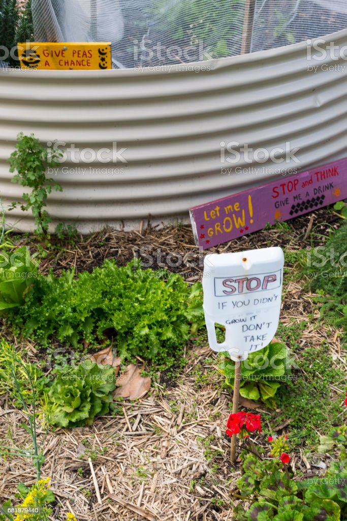 Photo Libre De Droit De Petit Jardin Potager Bio Banque D