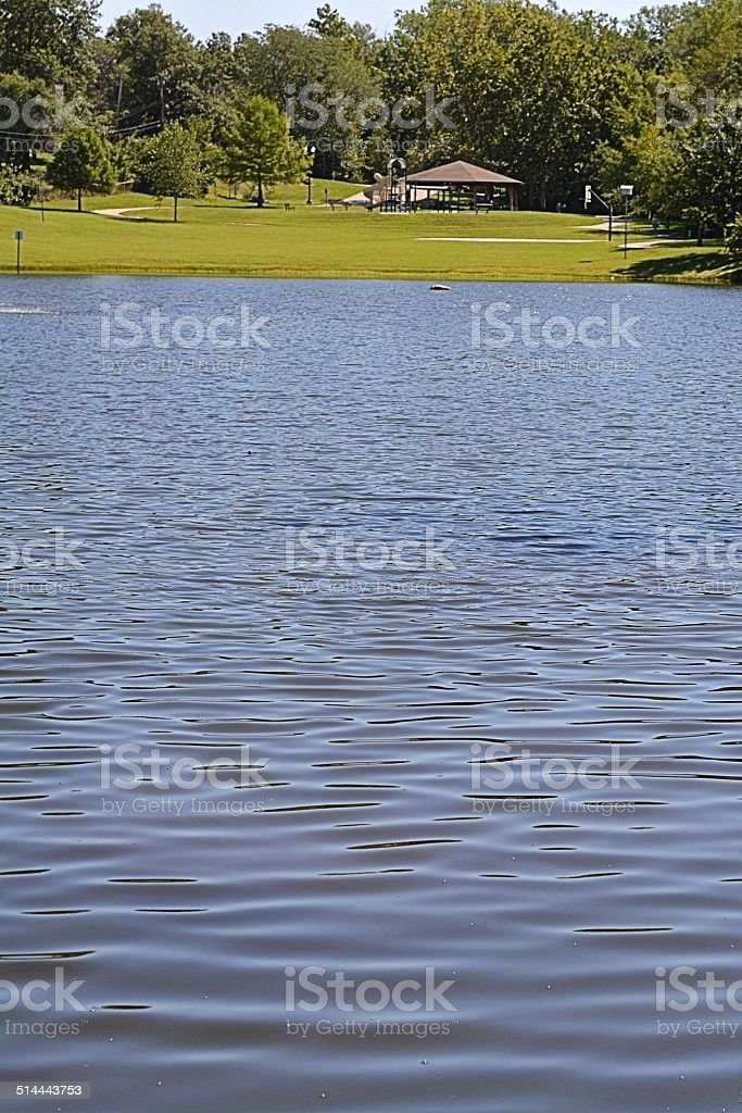 Small Park with Lake stock photo