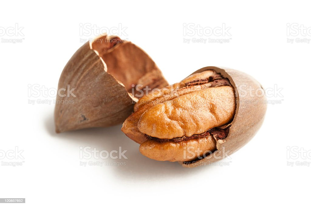 Small pecans opened up and sitting in the shell  stock photo