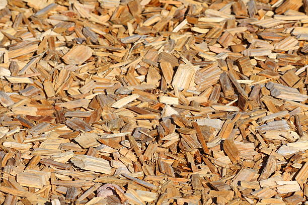 Kleine Teile von Holz – Foto
