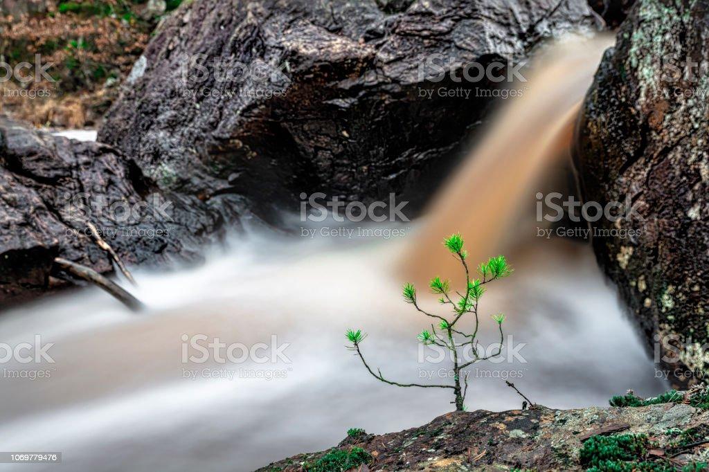 Liten tall av vatten bildbanksfoto