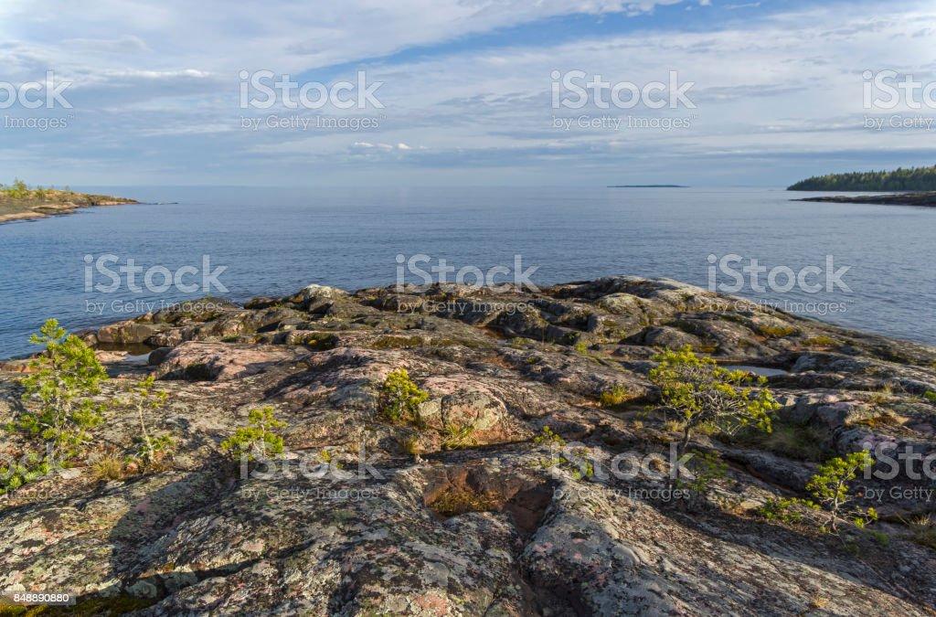Small pines on the granite shore of Lake Ladoga. stock photo