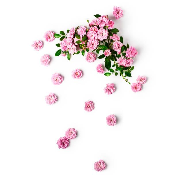 Small pink roses arrangement picture id1128976150?b=1&k=6&m=1128976150&s=612x612&w=0&h=eahlnxt6dwefrqm4uqu fjz7qnmiji3mlslnzaekina=