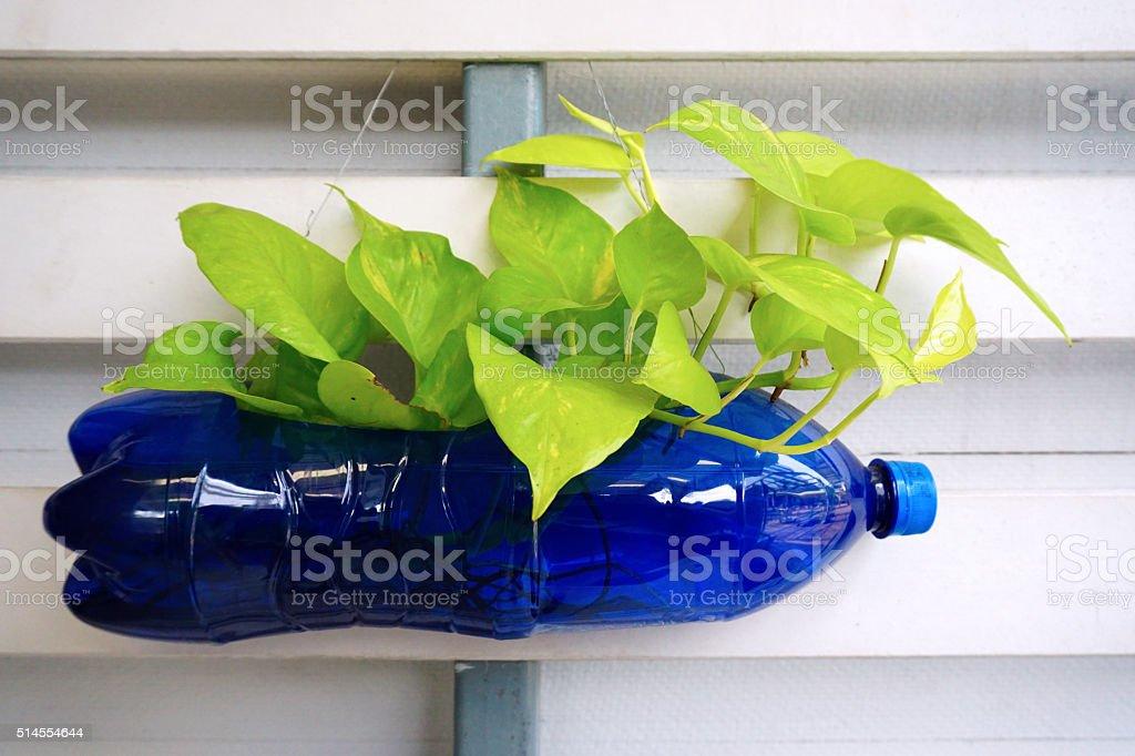 Pequeñas plantas de reciclaje de botellas de plástico - foto de stock