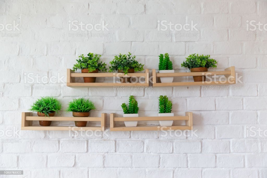 Small Plant Pots Placed On Wooden Shelf On White Brick Wall Stock Photo Download Image Now Istock