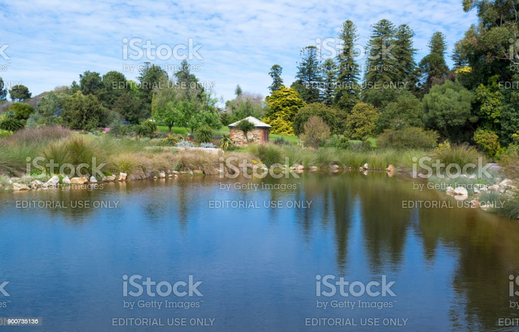 Small Pond, Adelaide Botanic Garden stock photo