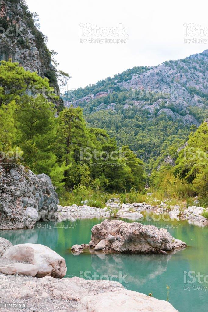 Pequeno lago no desfiladeiro entre verdes montanhas arborizadas. - foto de acervo