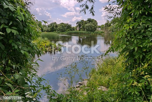 istock A small pond in the countryside with growing reeds and rocks near the shore. A good place for rest and fishing 1004772734