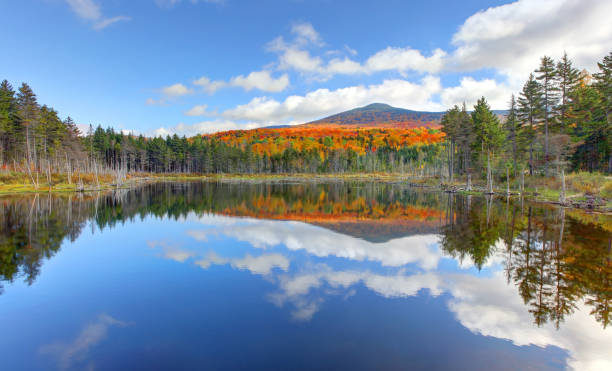 Small pond in the White Mountain National Forest The White Mountains are a mountain range covering about a quarter of the state of New Hampshire and a small portion of western Maine in the United States. reflection lake stock pictures, royalty-free photos & images
