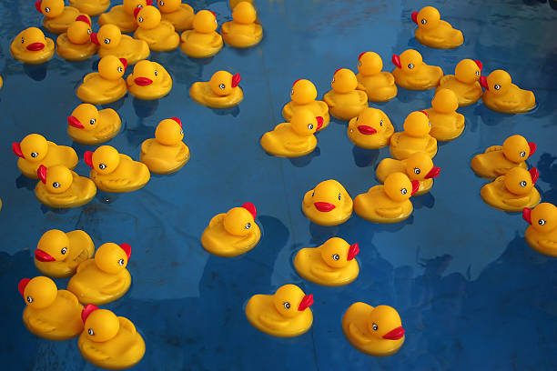 Royalty Free Rubber Duck Pictures Images And Stock Photos