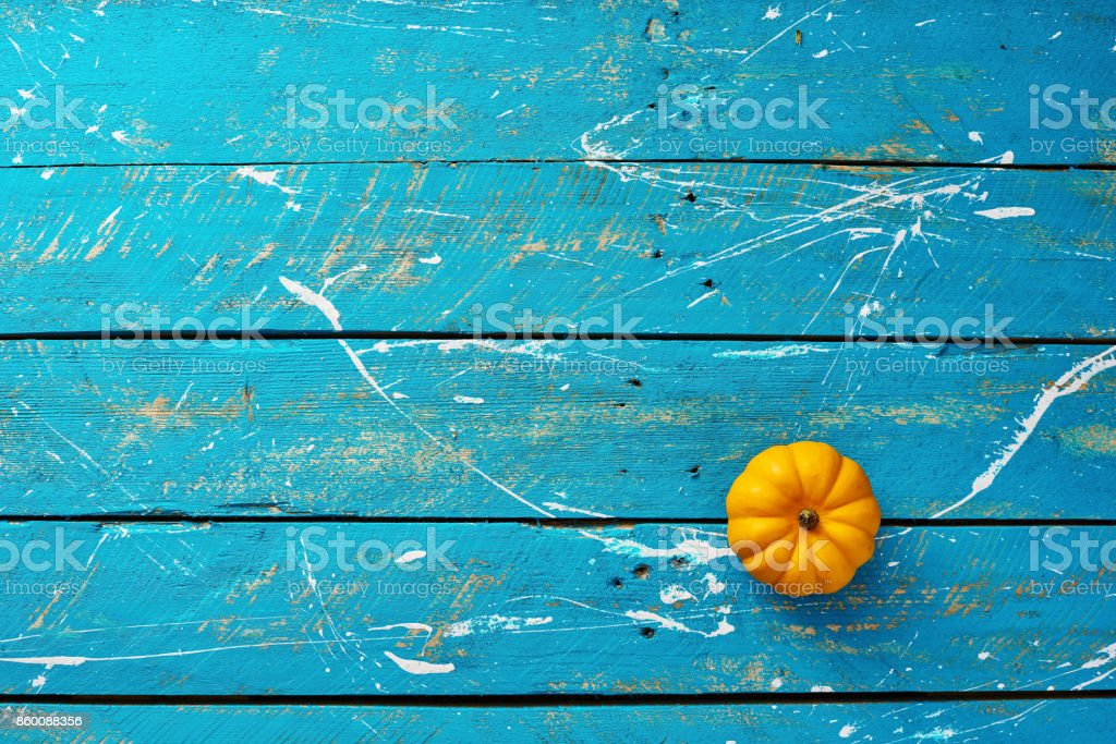 Small pumpkin on blue stock photo