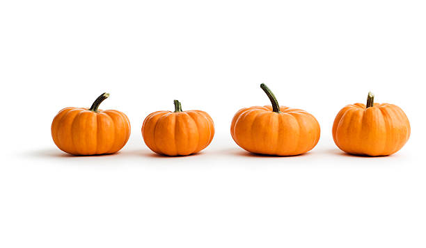 Small Pumpkins, Autumn Squash Vegetables in a Row on White Four small pumpkins, autumn squash vegetables lined up in a row. The edible food may be an ingredient for Thanksgiving pies or vegetarian dishes, or they may be used for decoration in fall celebrations. Isolated on a white background. pumpkin stock pictures, royalty-free photos & images
