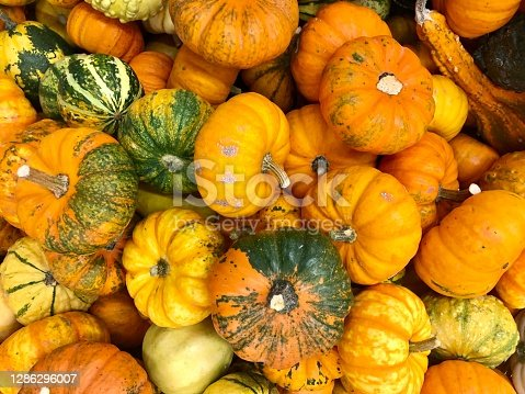 Small pumpkins for decoration