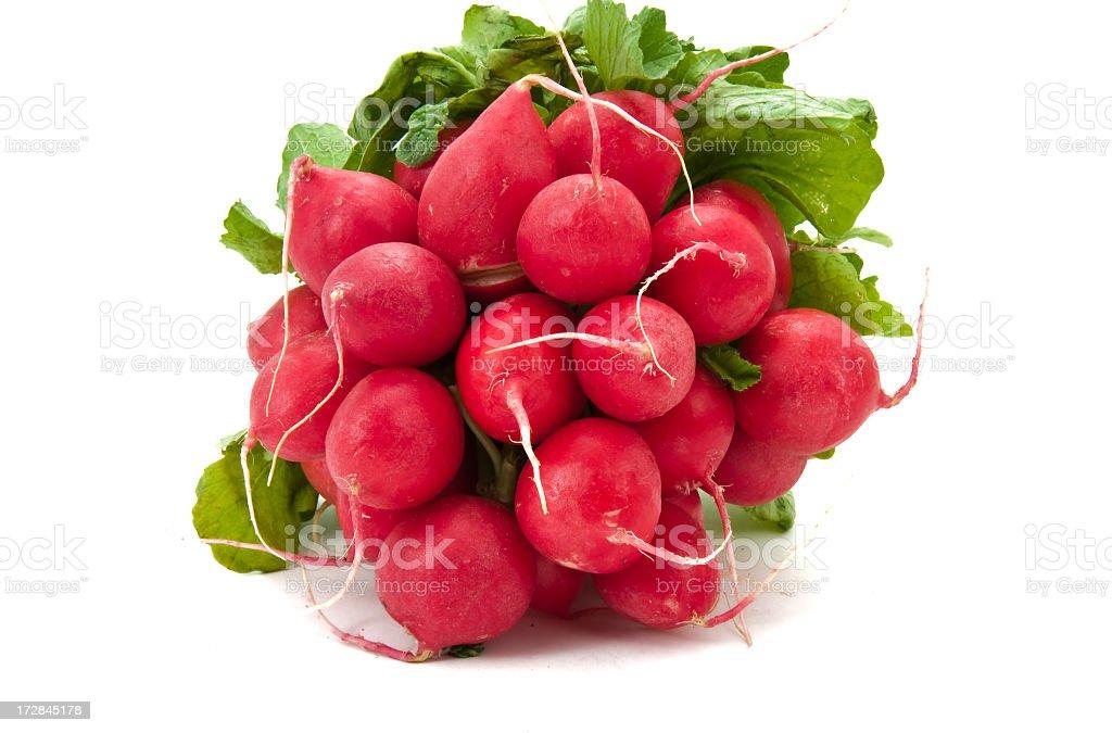Small radish royalty-free stock photo