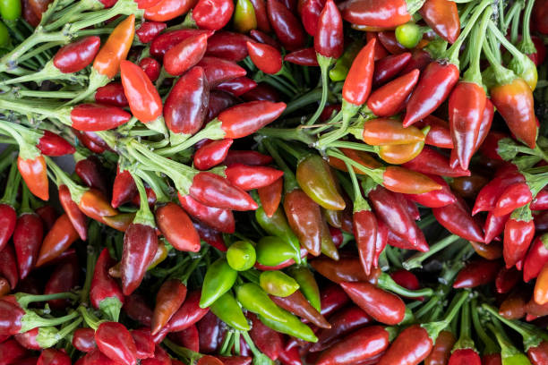 small red hot chili peppers macro view stock photo