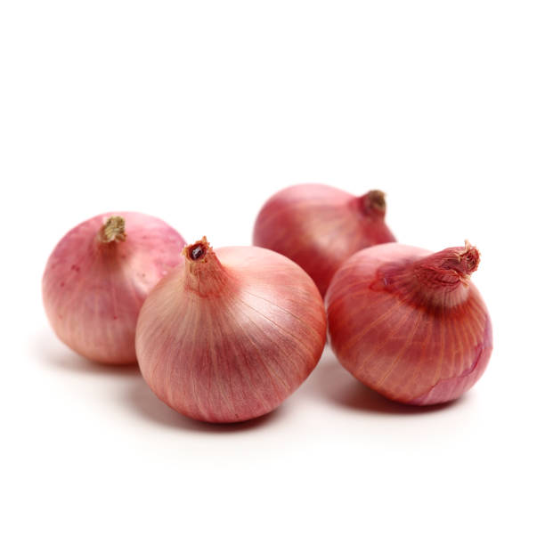 Small red onion on for boarding.Much pommels – zdjęcie