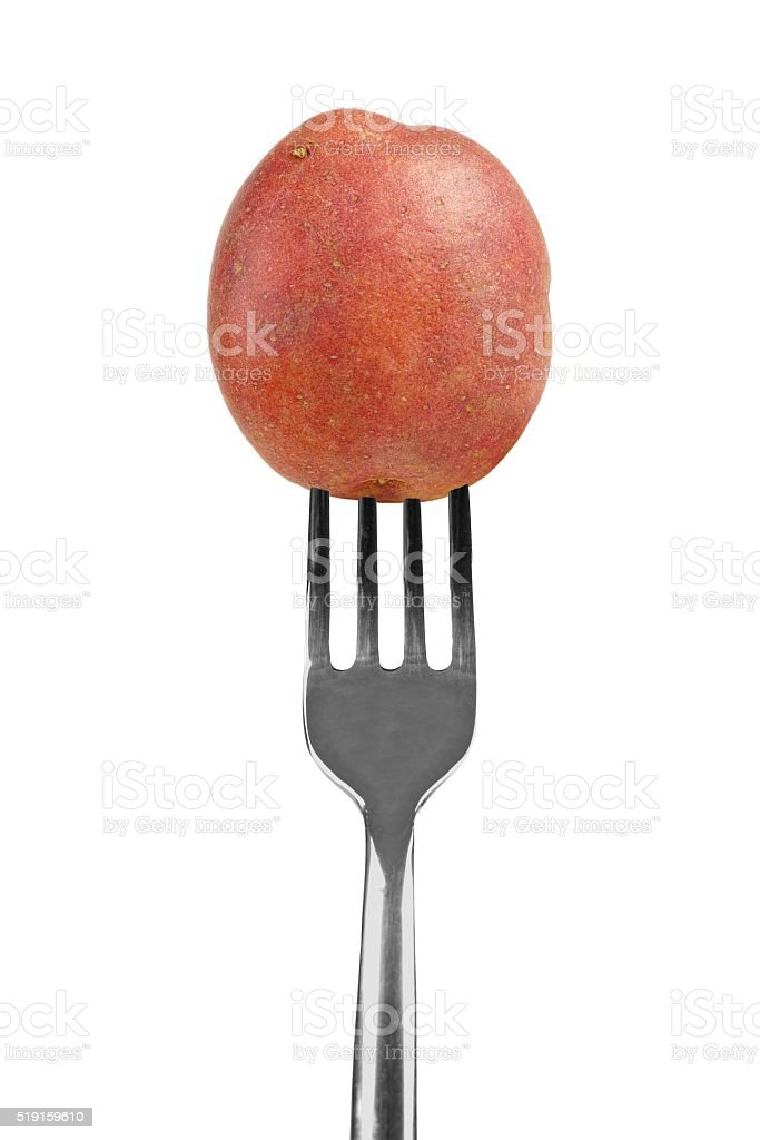 Small red potato on a fork isolated on white stock photo