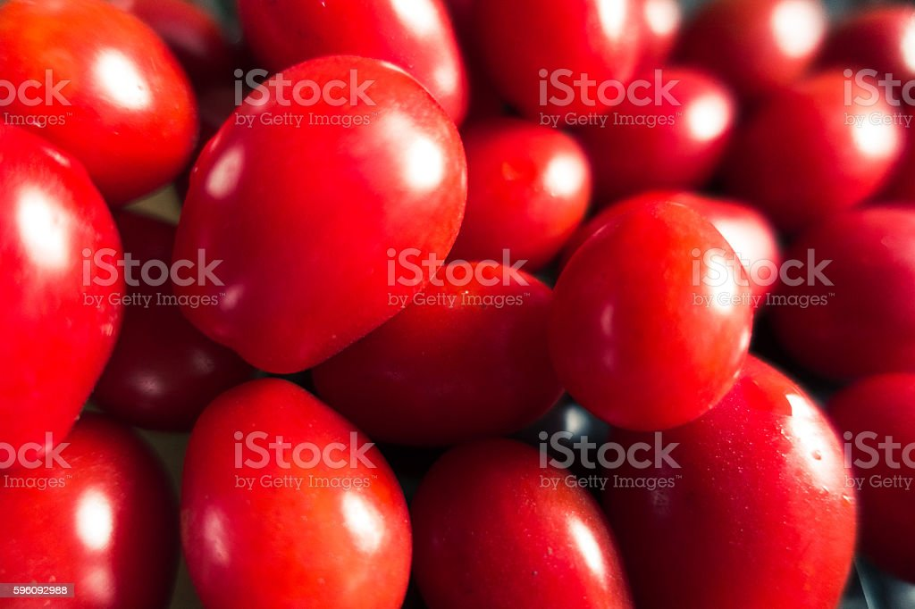 Small red tomatoes royalty-free stock photo