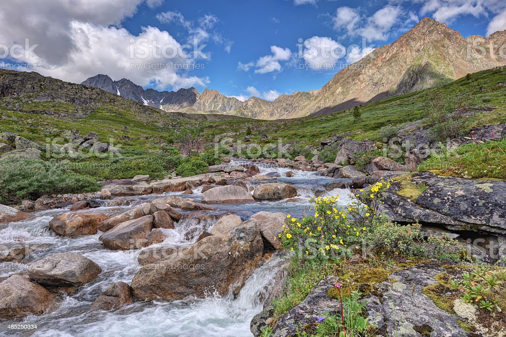 small river in the mountain tundra stock photo