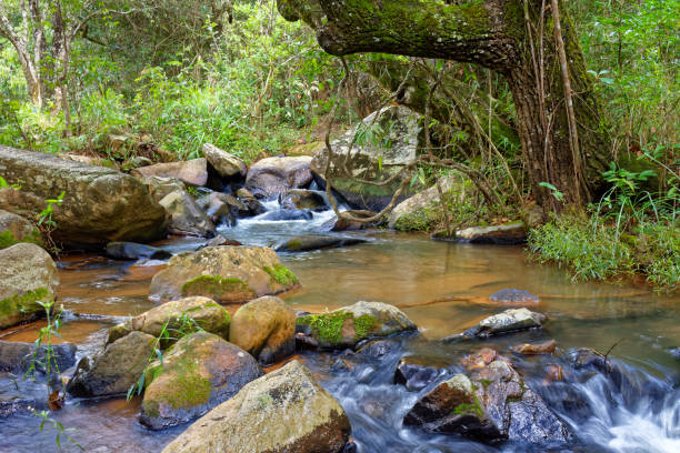Small river with clear waters running through the rocks stock photo
