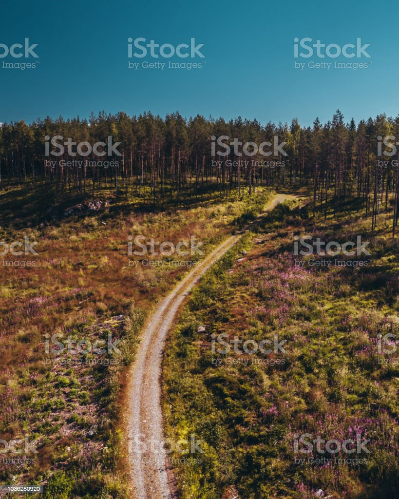 Drone shot of a small road going in to the woods in the middle of a...