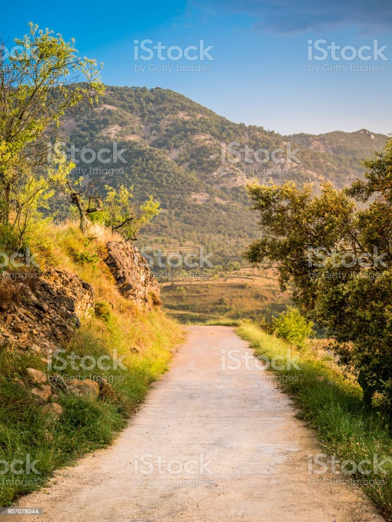 Small road in the spanish mountains leading to a wine yard field. stock photo