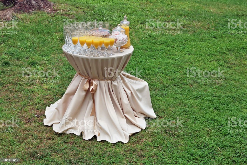 A small round table for a friendly party on the lawn royalty-free stock photo