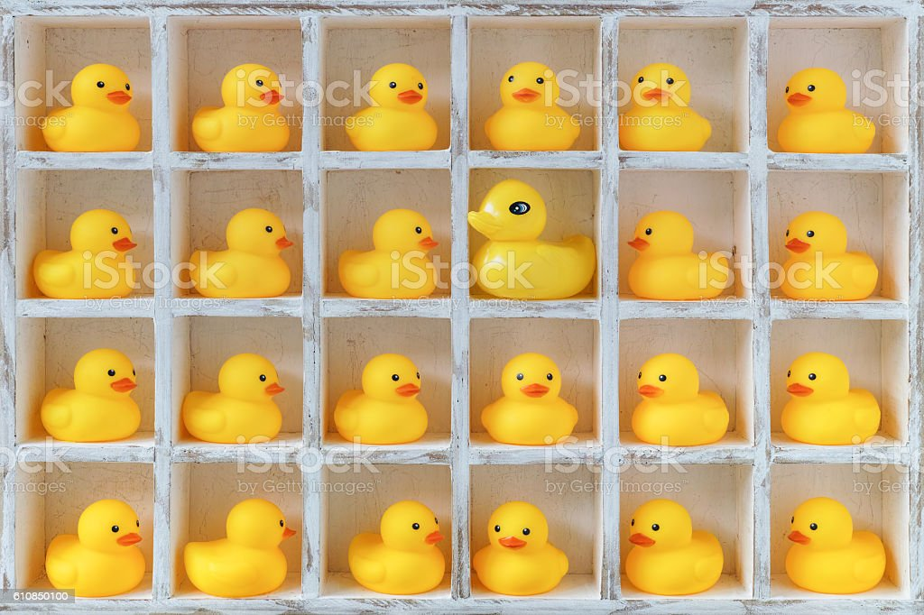 Small rubber ducks in pigeon holes, one alien duck. stock photo