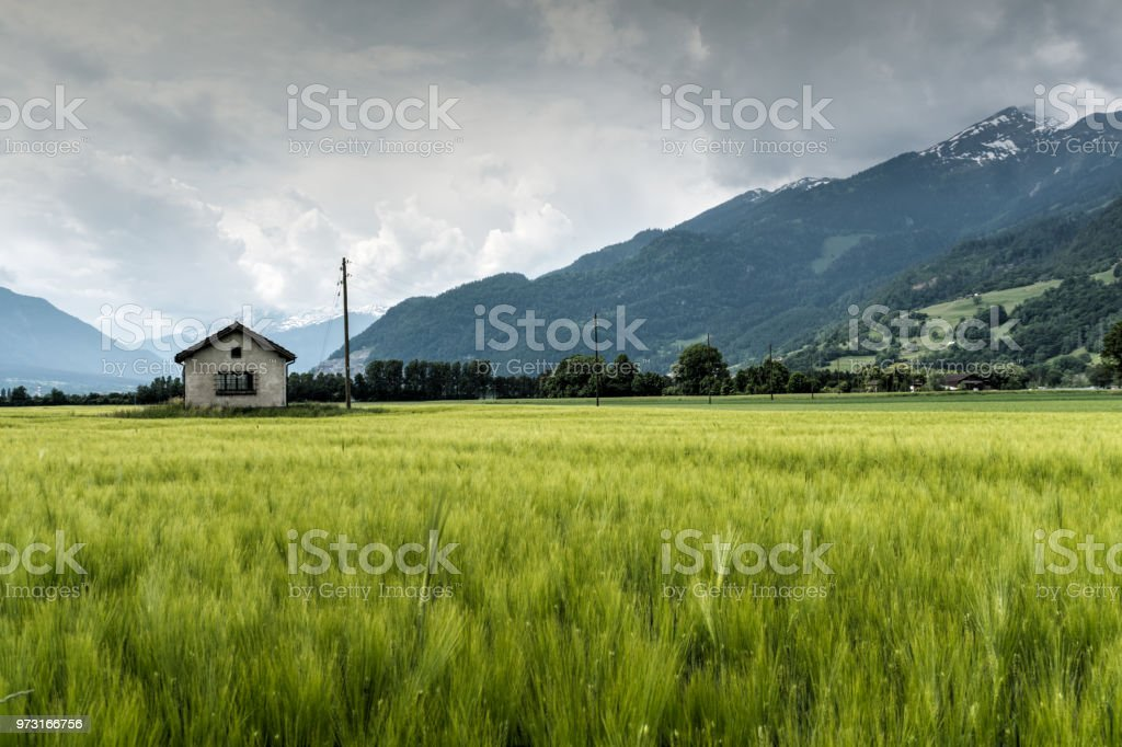 small rural power station and power lines in midst of a gorgeous farm and mountain landscape