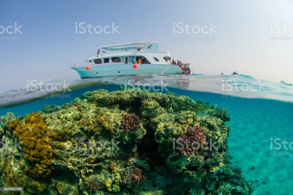 Small safari boat with snorkelists ready to jump into the water stock photo