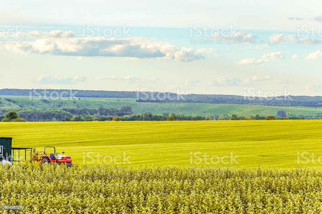 Small scale farming with tractor in field. Agricultural background. stock photo