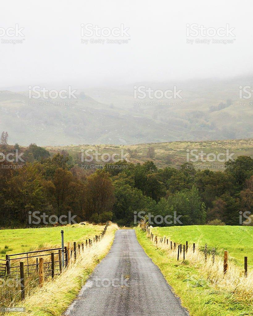 Small Scotland Farm Road on Rainy Day Vertical royalty-free stock photo
