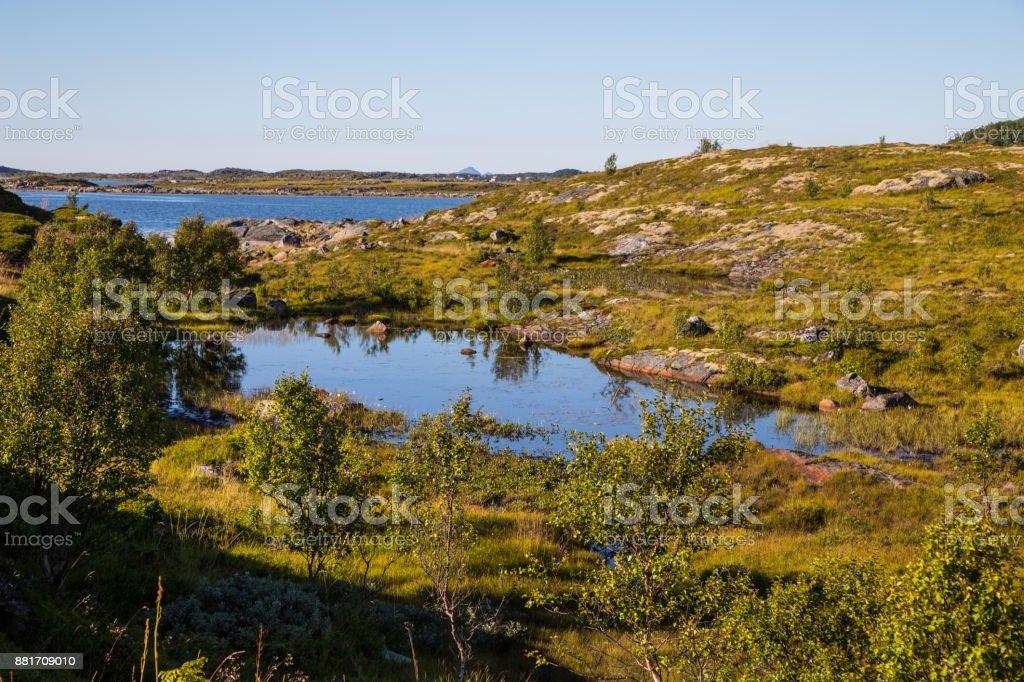 Ein kleiner See in Lofoten, Norwegen – Foto