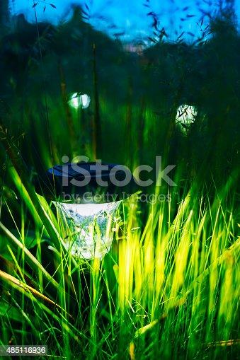 498598201 istock photo Small Solar Garden Light, Lantern In Flower Bed. Garden Design. 485116936