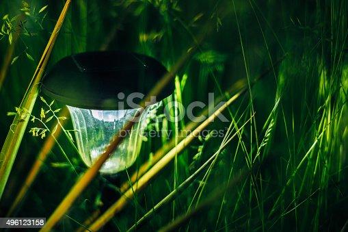 498598201 istock photo Small Solar Garden Light, Lantern In Flower Bed. Garden Design. 496123158